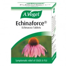Avogel Echinaforce Tablets 42